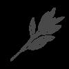 krauterkueche